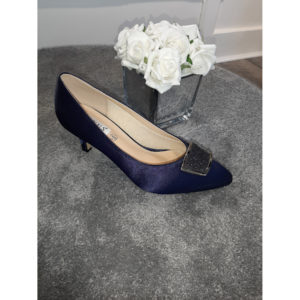 Fabiola Navy Occasion Shoe